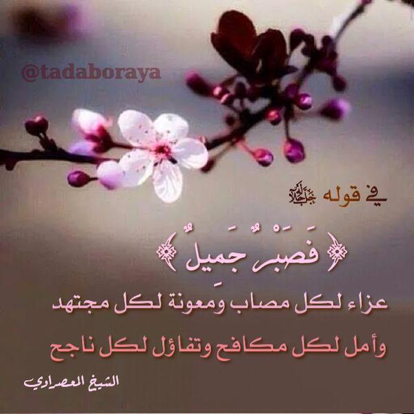 لا تأمنوا لاحد يعمل من اجل باطل 31/12/2014