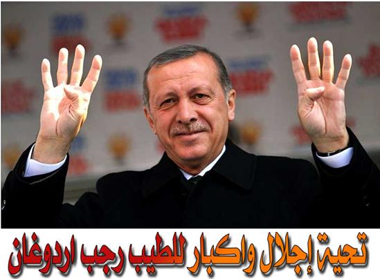 اردوغان يمثل من القيم ما تجعل الشارع العالمي يُشجعه