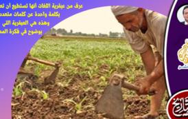 ما لا نعرفه عن معاني الثقافة والزراعة والسرعة!