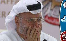 كان أنور قرقاش ينطق بما لا يجوز أن يقال على لسان وزير عربي